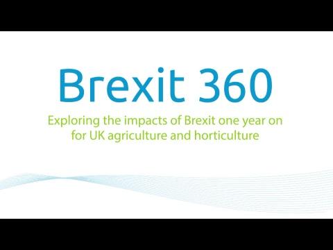 Brexit360