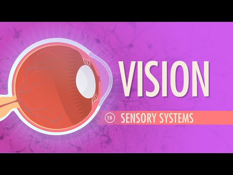 Vision: Crash Course A&P 18