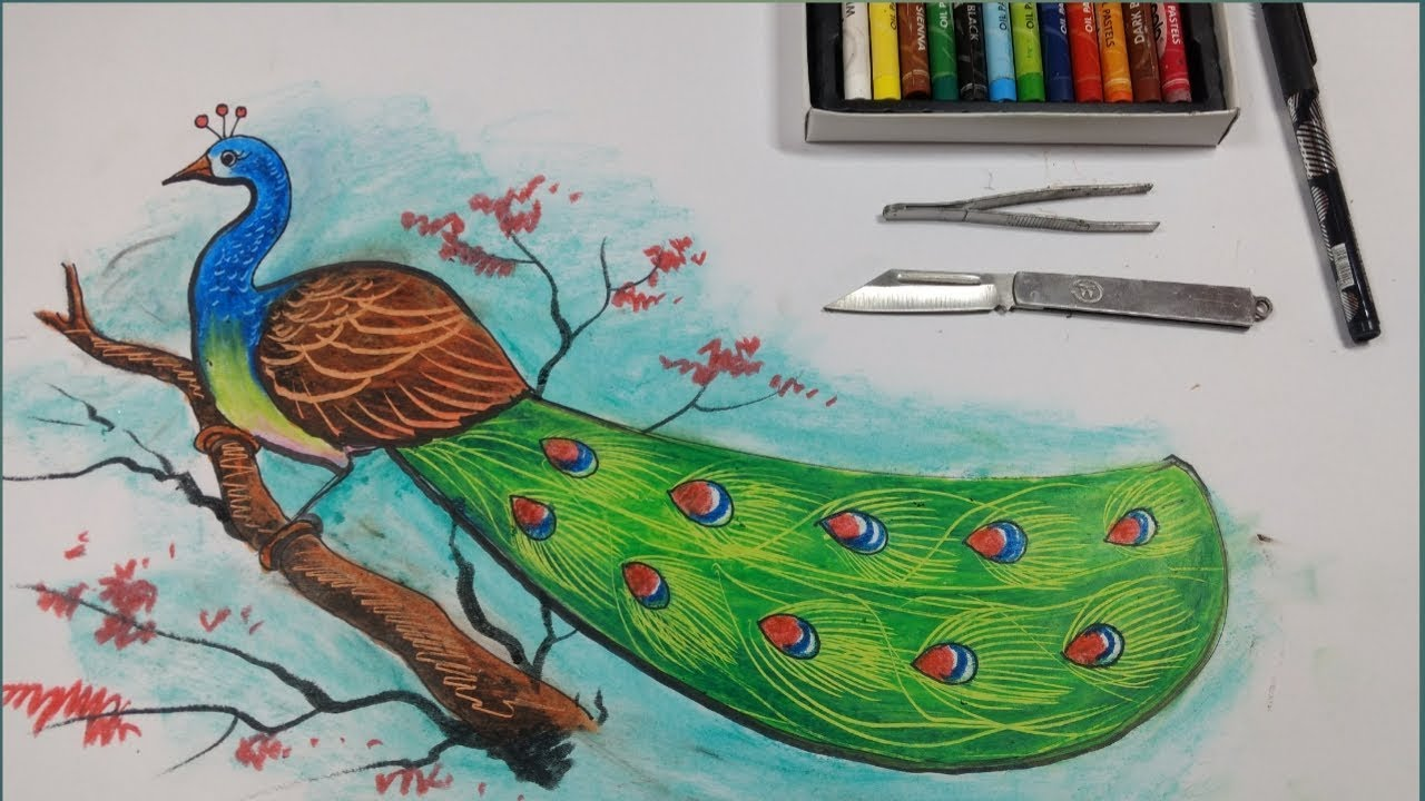 How To Draw A Peacock With Pastel Colour My New Channel Ruprekha Art Youtube