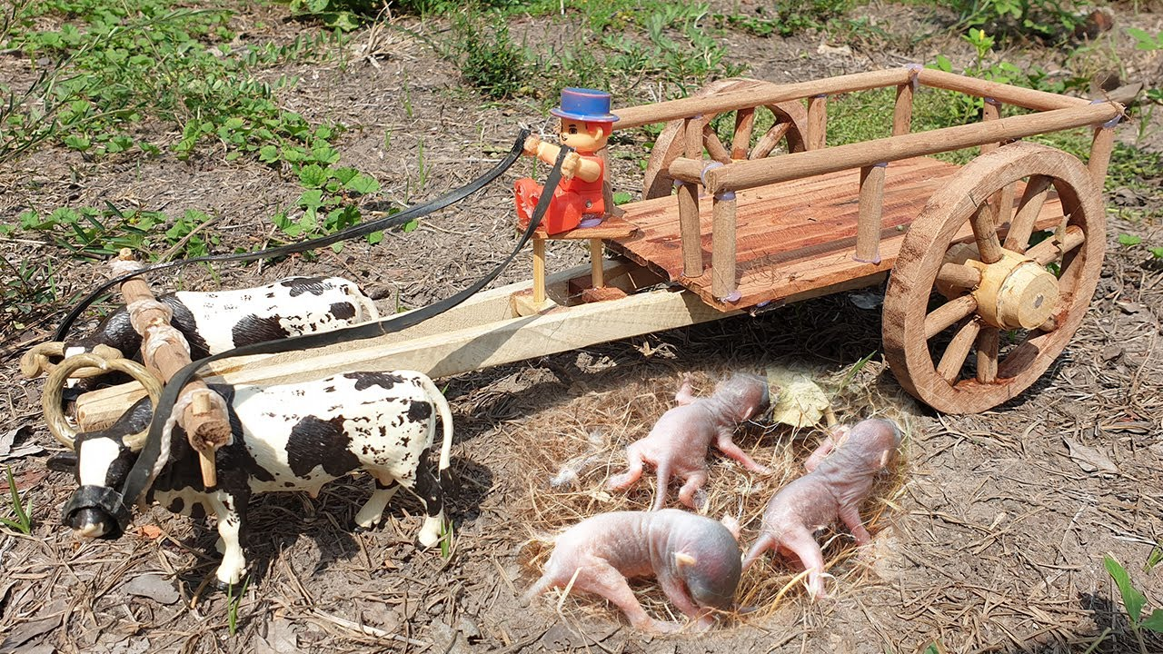 How To Make Cow Bullock Cart Rescue Baby Mouse - DIY Woodworking Projects