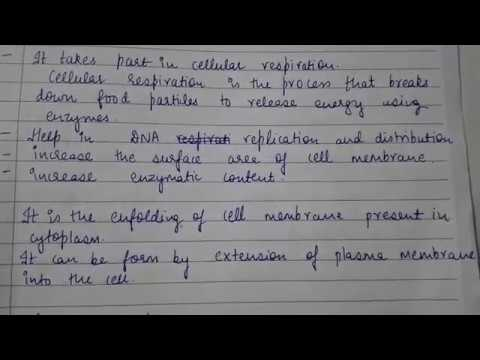 Zoology Notes (1) Paper 3 B Sc  1st year