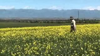 세계테마기행 - World theme travel_톈산 너머의 낙원, 키르기스스탄, 1부 _#001