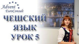 Чешский язык онлайн. Видеоуроки чешского языка. Урок 5
