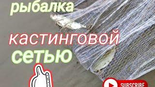 Рыбалка кастинговой сетью Алтайский край река Чумыш