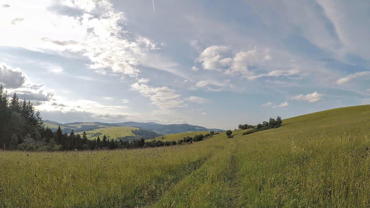 Z Przełęczy Vabec przez Ośli Wierch do Żegiestowa
