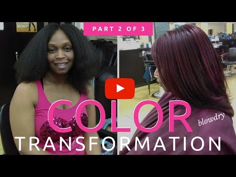 Detroit Hair Color Transformation from START to FINISH (Part 2 of 3) ~ The Blowdry