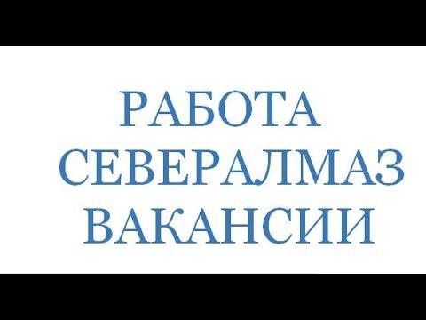 Архангельский кооперативный техникум::::::