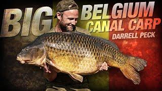 Darrell Peck - Big Belgium Canal Carp Fishing | Korda 2019