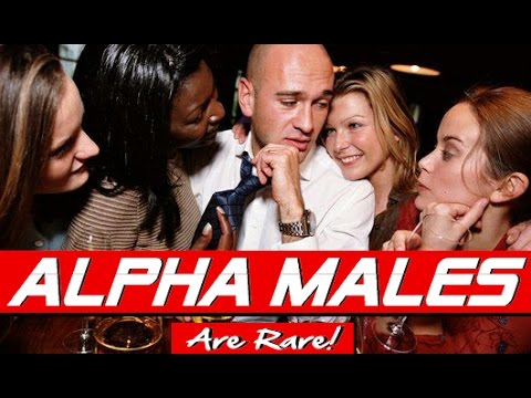 ALPHA MALES ARE RARE! WHY REAL ALPHA MALES ARE A SCARCE RESOURCE FOR ATTRACTIVE WOMEN!