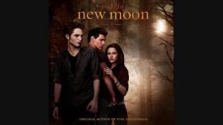 8. Bon Iver & St. Vincent - Rosyln - New Moon OST