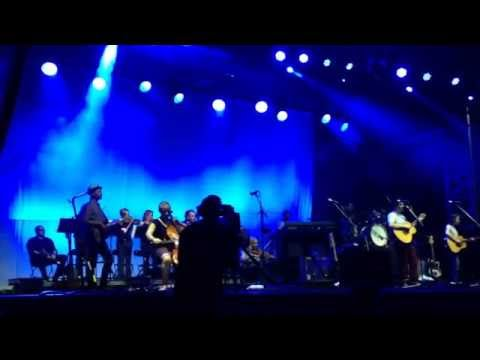 The Fox In The Snow - Belle and Sebastian (Live at Austin City Limits 2014)