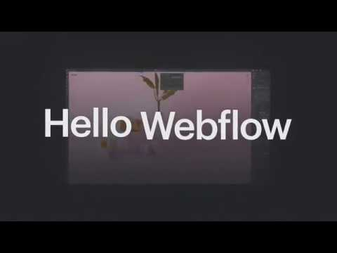 Webflow Pricing, Reviews and Features (August 2019) - SaaSworthy com