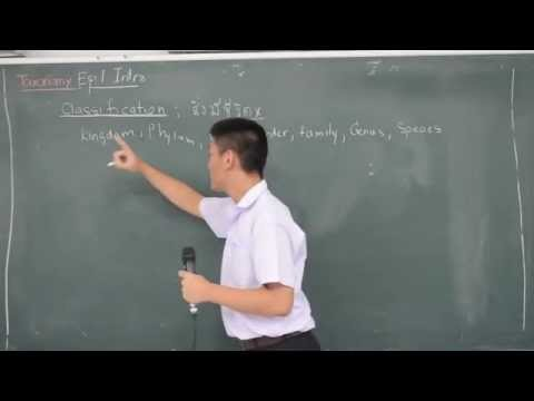 Taxonomy Ep.1 Introduction to Biology by พุดดิ้ง