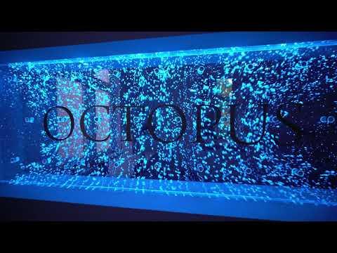 Bubble vodeni zid s natpisom - LIQUID HR TEAM