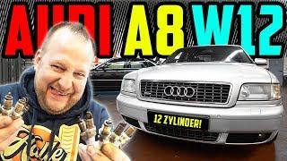 Marco SCHRAUBT  Audi A8 60 W12  Inspektion am 12 Zylinder