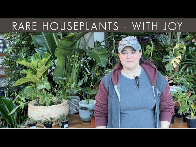 2/18/2021 Rare Houseplants with Joy