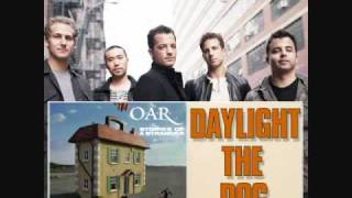 Daylight The Dog