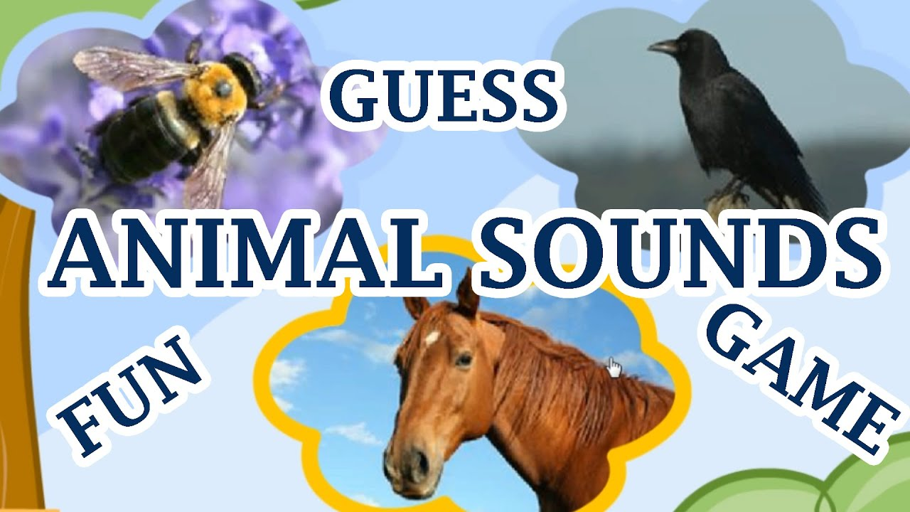 Animal Sounds Guess The Animal By The Sound A Fun Game For Kids