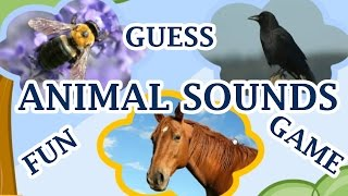 Los Sonidos De Los Animales, Adivina El Animal Por El Sonido, Un Divertido Juego Para Los Niños