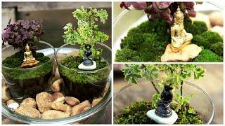 Terrarium With Bhuddha -DIY | Garden Decor.