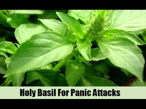 8 Herbal Remedy For Panic Attacks