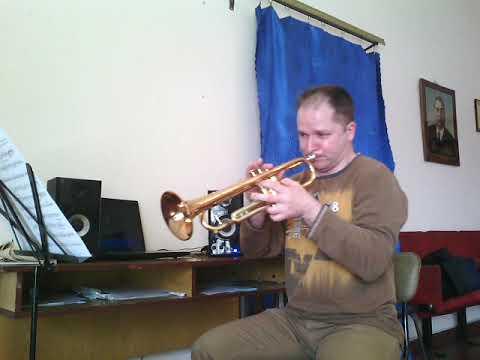 """""""wonderland-by-night"""".-trumpet-solo."""