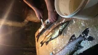 Рыбалка Карелия 2017 г
