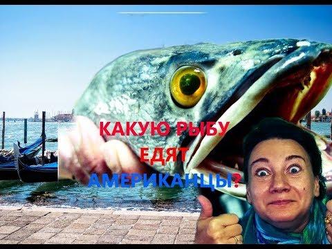 В Москве тоже рыбу можно поймать - YouTube