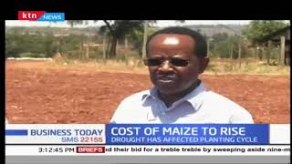 Maize crops fail to grow due bad weather