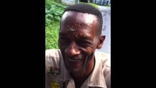 Big ass spider in Jamaica