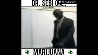 Dr. Sebi on Marijuana