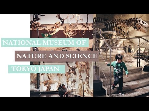 Tokyo National Museum of Science and Nature | TigerMomKittenDaddy