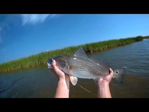 FIshing Mobile Bay Redfish action