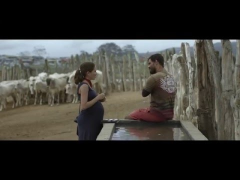 Trailer de Neon Bull — Boi Neon (HD)