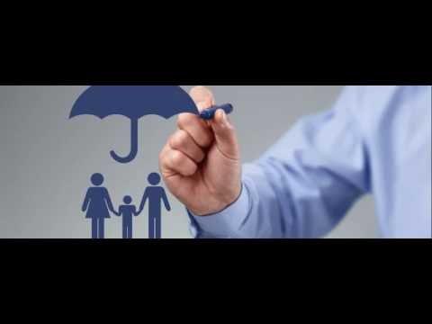 insurance life  car insurance   health insurance
