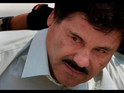 DOCUMENTAIRE - El chapo le parrain de la mafia, les narcotrafiquants reportage choc