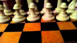 Учимся играть в шахматы.Урок 1