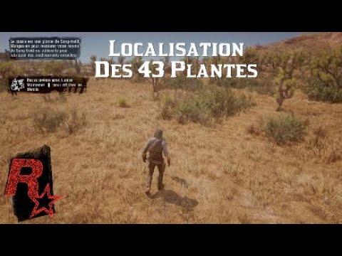 Red Dead Redemption 2 Localisation Des 43 Plantes
