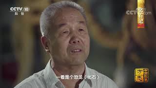 《中国影像方志》 第437集 辽宁义县篇| CCTV科教
