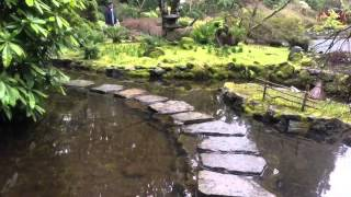 Beautiful Butchards Gardens Ponds and waterfalls mossy Japanese Garden in Victoria BC Canada Part2