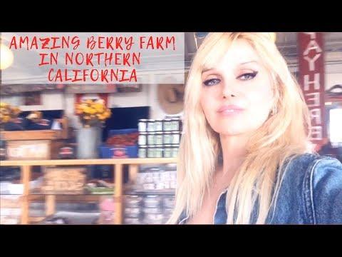 Most Amazing Organic Strawberry Farm in Northern California!