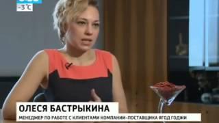 Ягоды годжи польза или вред обзор канала Россия 1