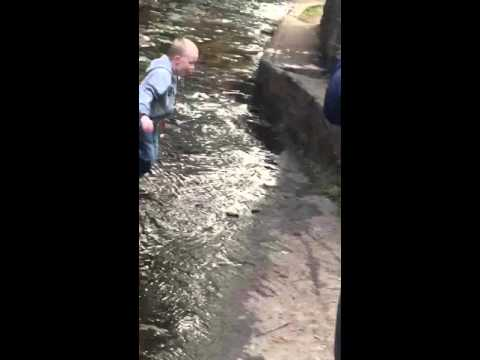 Epic fail at the forest