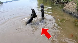 River Fishing Goes HORRIBLY WRONG!!! (I Made a HUGE MISTAKE)