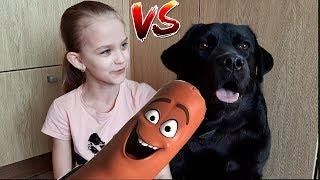 Новый Челлендж-Сосиска с моей собакой / где моя сосиска?
