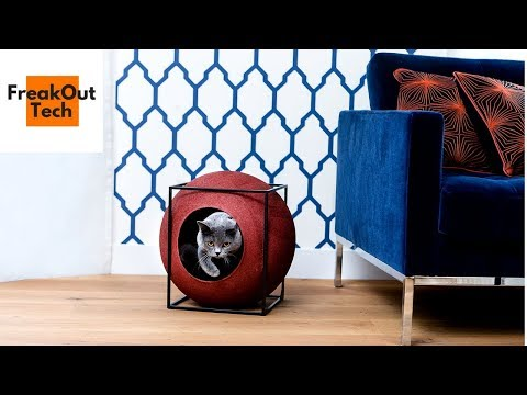 5 Incredible Inventions For Your Cat #9 ✔