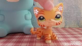 LPS: моя коллекция стоячих кошек ^_^