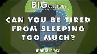 Can you be tired from sleeping too much? - Big Questions - (Ep. 45)