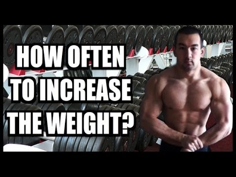 Best Weight Lifting Program For Weight Loss
