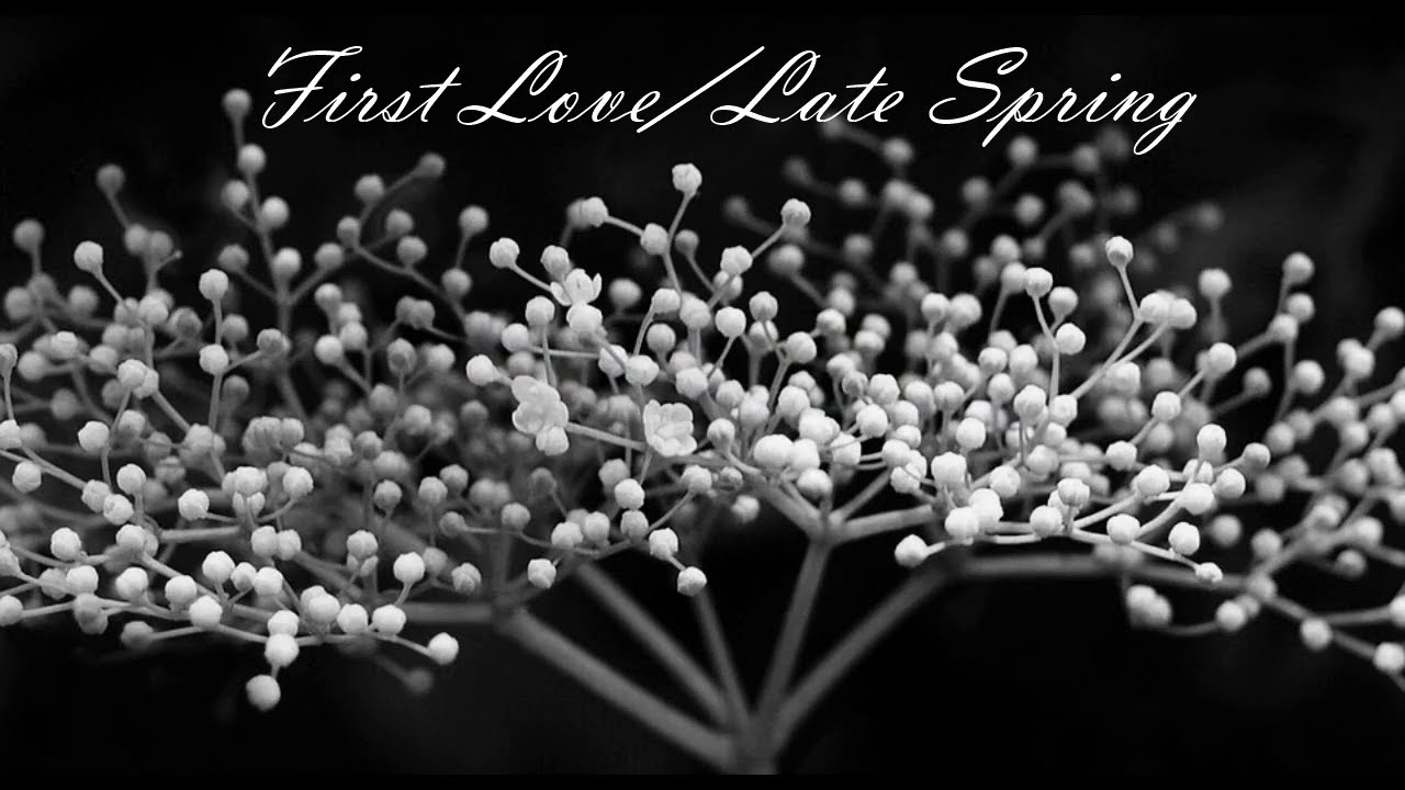 mitski-first-love-late-spring-subtitulada-sergio-rios